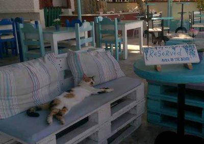 Avra on the Beach Taverna Corfu Greece